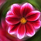 Dahlia - red by Evelyn Laeschke