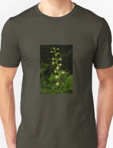 The surprising beauty of Greater Butterfly-orchid T-Shirt