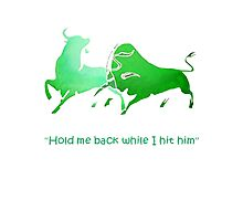 Hold Me Back While I Hit Him - Irish Bull Photographic Print