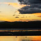 Dragon Breath Sunset by George Petrovsky