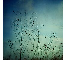 Ethereal Moment Photographic Print