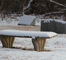 Snow at Rest by Gilda Axelrod