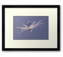 Blue dandelion drops Framed Print
