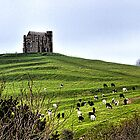 A View Of  St Catherine , Abbotsbury,Dorset UK by lynn carter