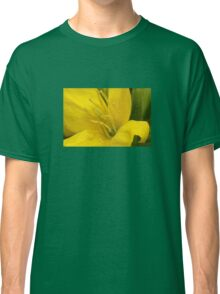 Primrose ~ Yellow Delight ~ close-up Classic T-Shirt