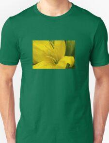 Primrose ~ Yellow Delight ~ close-up T-Shirt