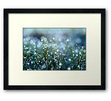Fairy Drops Aqua Blue Framed Print