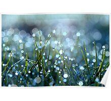 Fairy Drops Aqua Blue Poster
