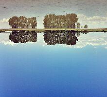 upside down by claudioasile