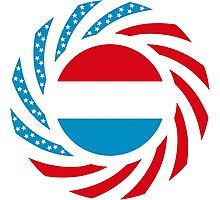 Luxembourg American Multinational Patriot Flag Series Photographic Print
