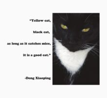 """Yellow Cat, Black Cat..."" Quote by Deng Xiaoping by KTMorgan"