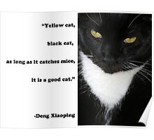 """Yellow Cat, Black Cat..."" Quote by Deng Xiaoping Poster"