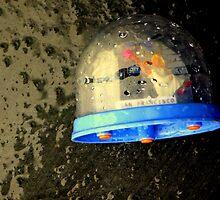 Snow Globe-al Warming by Michael May