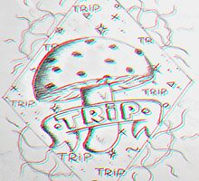 Trip by Meghan Thomas