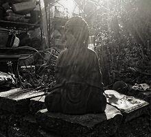 Back Garden Buddha  by Nigel Bangert
