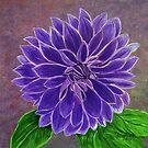 Purple Dahlia  by maggie326