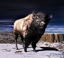 Bison King by DYoungDigital