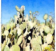 Prickly Pear Cactus II by Roger Passman