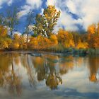 Autumn Splendor by Floyd Hopper