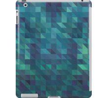 BLU iPad Case/Skin