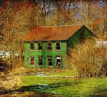 The old green building by vigor