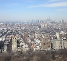 Park Slope -Brooklyn Aerial Photography by Philip Sweeting