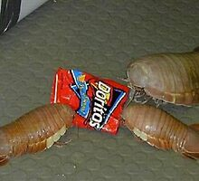eatin ur doritos up by voidmatrix