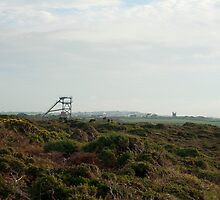 Cornish tin mining landscape by photoeverywhere