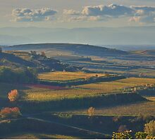 View across the Kaiserstuhl in Autumn by Mark Bangert