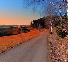 Country road into a beautiful sunset at Auberg | landscape photography by Patrick Jobst
