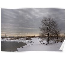 Pearly Grays and Ripples on the Winter Beach Poster