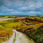 Kingston Ridge by Paula Oakley