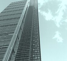 Spot the Window Cleaner by Truciolo