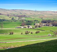 Yorkshire Dales near Wensleydale by photoeverywhere