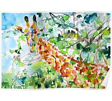 GIRAFFE - watercolor portrait Poster