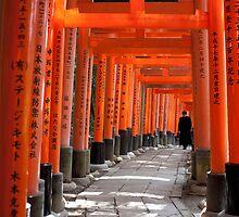 torii gate path by photoeverywhere