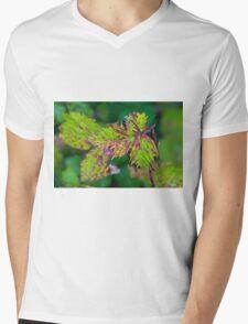 Blackberry Leaf Abstract Mens V-Neck T-Shirt