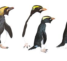 Penguin Group by PatiDesigns