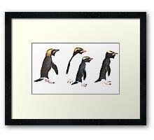 Penguin Group Framed Print