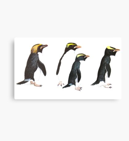 Penguin Group Canvas Print