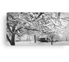 winter bliss (bw) Canvas Print