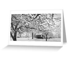 winter bliss (bw) Greeting Card