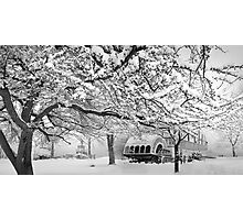 winter bliss (bw) Photographic Print