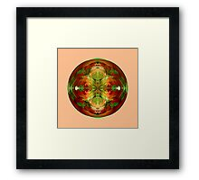 Amazed on pink Framed Print