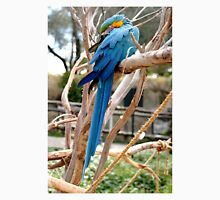 Blue And Gold Macaw Unisex T-Shirt