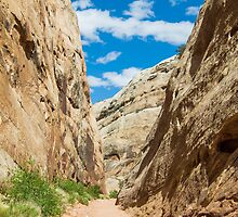 Narrow Canyon at Capitol Reef National Park by Kenneth Keifer