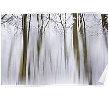 Wintle landscape Poster