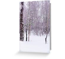 Winter Forest Greeting Card