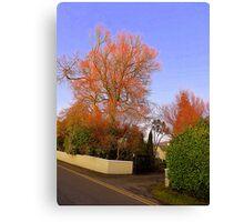 The Irish Orange Trees Canvas Print