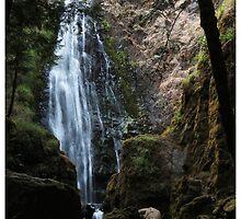 Susan Creek Falls, Oregon  by Rogere0829